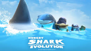 shark evolution fr requin de recif shark evolution fr requin de recif