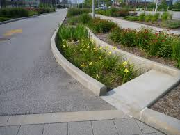 Landscape Designs Of Indianapolis Stormwater Planter Eli Lilly Corporate Campus