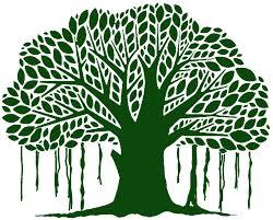 Banyan Tree Logo Design Banyan Tree Logo Google Search Tree Logos Bonsai Tree