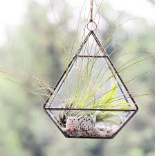 Air Plant Terrarium Hanging Geometric Vase Air Plant Terrarium With Owls By Dingading
