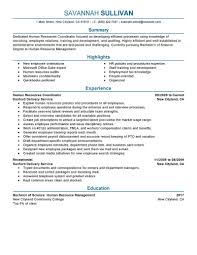 Education Coordinator Resumes Hr Coordinator Resume Example Human Resources Sample