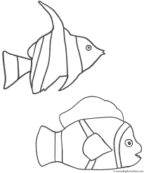 Small Picture Angel Fish and Clown Fish Coloring Page Fish