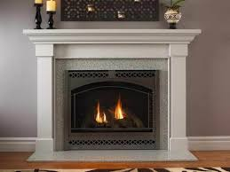 Living Room: Miraculous Amazon Com Dimplex DFI2309 Electric Fireplace  Insert Home Kitchen On from Amazon