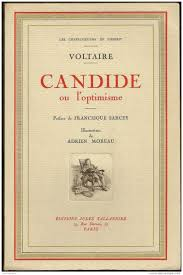 candide essays essay ideas for candide
