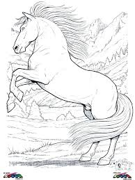 Detailed Horse Coloring Pages Realistic Horse Coloring Pages Horses