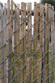 chain link fence bamboo slats. Brilliant Bamboo Have  Inside Chain Link Fence Bamboo Slats L