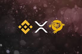 Xrp Chart Binance Ripple Bitcoin Sv And Binance Coin Price Prediction And
