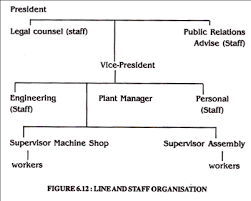 5 Main Types Of Organisational Structure