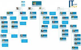 Organization Chart Chart 5