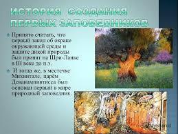 Презентация на тему Реферат на тему Заповедники России  6 Принято считать что первый
