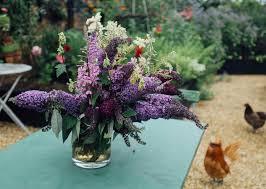 Kitchen Garden Hens Our Story Emma Bridgewater