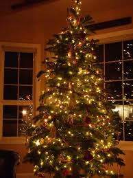 outdoor tree lighting ideas. Christmas Decorating Ideas Room Home Tagsawesome Beautiful Country Joyful Elegant Glittering Decorations Wreath Lights Affordable Outdoor Lighting For Tree