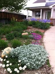 Xeriscape Front Yard Astonishing Landscaping Ideas For Front Yard North  Images Home Improvement Xeriscape Front Yard