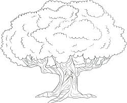 Book Coloring Page Family Tree Coloring Pages Book Trees Page