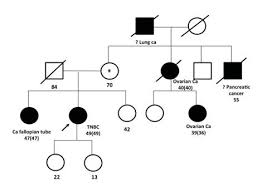 Genetic Family Tree Mystrand Do You Have A Family History Of Cancer