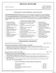 Senior Project Manager Resume Sample Senior Project Manager Resume ...