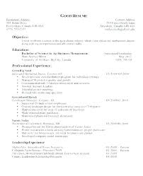 Examples Of Good Resume Inspiration Resume Objective Statements Samples Resume Objectives For Sales