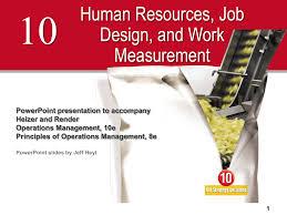 Principles Of Job Design Human Resources And Job Design