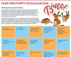 Toolbox Fear Free Pets