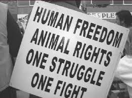 how animal liberation will benefit human rights