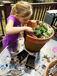 learn how to build a fairy garden with kids in clay pots this kids activity