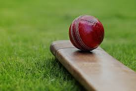 Image result for pe cricket