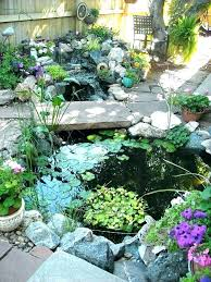 build koi ponds pond backyard pond urban backyard by rocky mountain pond build backyard pond diy
