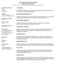 Company Executive Summary Template Ethercard Co