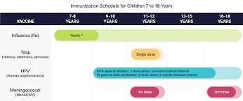 Age Chart For Shots Vaccine Schedule Recommend Vaccines For Children Adults