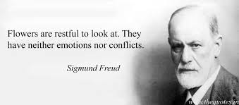 Freud Quotes Beauteous Sigmund Freud Quotes Quotes