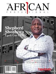 The African Professional Issue 17 by The African Professional ...