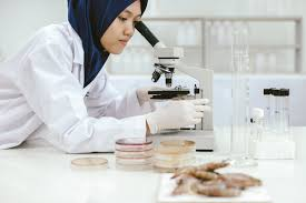 Image result for food analyst act 2011