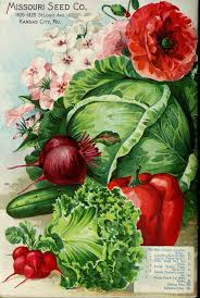 garden seed catalogs. Catalogue Of Seeds For Farm And Garden Seed Catalogs R