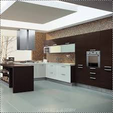Small Picture Interior Design Of Kitchen Cabinets Shoisecom