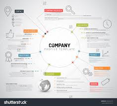 Company Overview Templates Vector Company Infographic Overview Design Template With