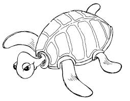Green Sea Turtle Coloring Page Free Pages Baby Turtles Cute