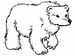 Small Picture adult polar bear color sheet coca cola polar bear coloring sheets
