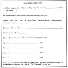 Basic Promissory Note Simple Dr Credit Promissory Note A Simple Form That Accomplishes Many Things