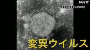 武漢 ウイルス 研究 所 爆発