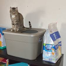 image covered cat litter. Stinker And Her New DIY Covered Cat Litter Box #yougottabekittenme #ad #cbias Image A