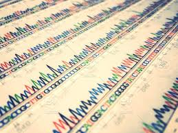 Dna Sequence Stock Photo 8f6babac 9909 472d A143