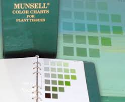 Plant Color Charts Determine The Color Of Plant Tissues