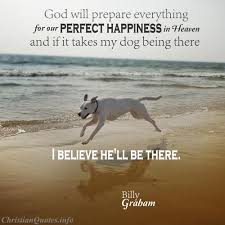 Quotes About Dogs Cool Billy Graham Quote Dogs In Heaven ChristianQuotes