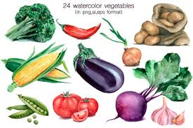 Free transparent vegetables vectors and icons in svg format. Watercolor Vegetables Fruits Graphic By Vera Vero Creative Fabrica