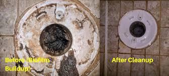 house smells like sewage get rid of