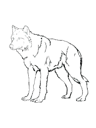 cute baby wolf anime.  Anime Cute Wolf Coloring Pages Baby Anime C73 To Cute Baby Wolf Anime B