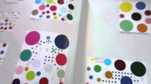 damien hirst the complete spot paintings book 1986 2016