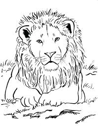 lion coloring page bell lion coloring pages to print lion coloring page home improvement free printable mountain lion coloring pages sea lion coloring pages