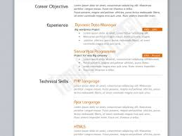 Astounding Programmer Resume Example Cv Template Resume Job