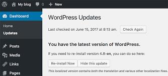 wordpress version in updates section